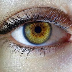 A beautiful macro closeup shot of a female human's deep eyes